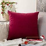 MIULEE Samt Weihnachten Christmas Kissenbezug Kissenhülle Dekorative Dekokissen Weihnachtsdekoration mit Verstecktem Reißverschluss Sofa Schlafzimmer Auto 24x 24 Inch 60 x 60 cm 1 Stück Wein Rot