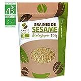 Graines de Sésame Bio - 500g (Sesamum indicum)