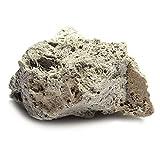 LNIMIKIY YonganUK 1 Stück schwimmender echter Steine, künstlicher Bimsstein für Aquarien, schwimmender Moosstein, Aquarium, Dekoration für schwimmende Felsen (L 9 cm - 15 cm)