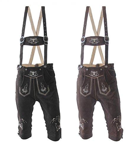1da9855a8577ae Almwerk Herren Trachten Lederhose Kniebund Modell Platzhirsch in  verschiedenen Farben