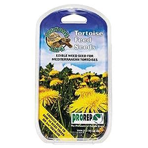 ProRep KPT010 Semences de plantes pour tortues