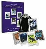 Kartenlegen mit Angelinas 80 Lenormand – Tarot – Wahrsagekarten: Begleitbuch incl. Kartendeck
