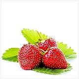 Wallario Möbeldesign/Aufkleber, geeignet für Ikea Lack Tisch - Frische Rote Erdbeeren für die Küche in 55 x 55 cm