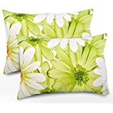 Ahmedabad Cotton 2 Piece Cotton Pillow Cover Set - 18 Inch X 27 Inch, White And Green