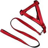 GHMM Haustier Traktionsseil Brustgurt (Einstellbar) Nylon Geflochten Outdoor-Sport Mode Weich Komfortabel und Langlebig Multi Farbe Optional (Schwarz/Blau/Rot) Haustier Leine