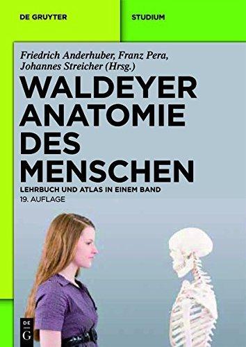 Waldeyer - Anatomie Des Menschen: Lehrbuch Und Atlas in Einem Band (de Gruyter Studium) (German Edition) (2012-05-29)