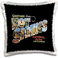 BLN Vintage US Cities and States Postcards - Greetings From Hot Springs National Park Arkansas Bold Scenic Lettering on Black Background - 16x16 inch Pillow Case - Arkansas Postcard