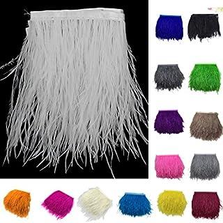 Sharplace Kit Plume D'autruche Teints Frange Brun Garniture Décoration Vêtements Maison Sacs Chapeaux Loisirs Créatif