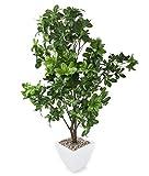 Closer To Nature Kunstblumen 4ft 15,2cm Regenschirm–Kunstpflanze Seide und Baum Serie