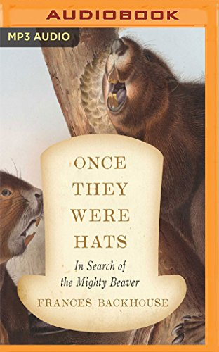 Once They Were Hats: In Search of the Mighty Beaver