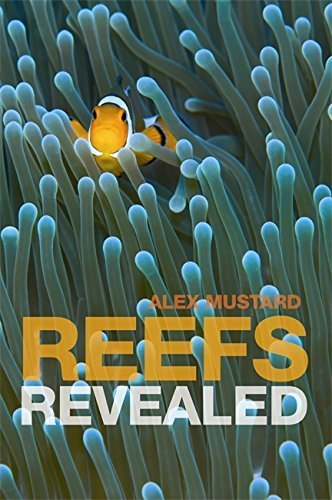 Reefs Revealed by Alex Mustard (2007-10-25)