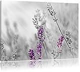 schöner Lavendel schwarz/weiß Format: 80x60 auf Leinwand, XXL riesige Bilder fertig gerahmt mit Keilrahmen, Kunstdruck auf Wandbild mit Rahmen, günstiger als Gemälde oder Ölbild, kein Poster oder Plakat