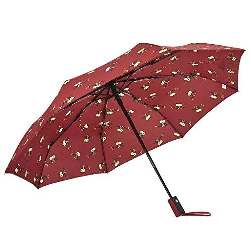 GAOLILI Umbrella Weibliche Automatische Falten Kreative Kleine Frische Regen Regenschirm Dual Use ( Farbe : D ) -