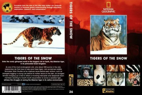 tigers-of-the-snow-national-geographic-journeys-with-wildlife-26-dvd