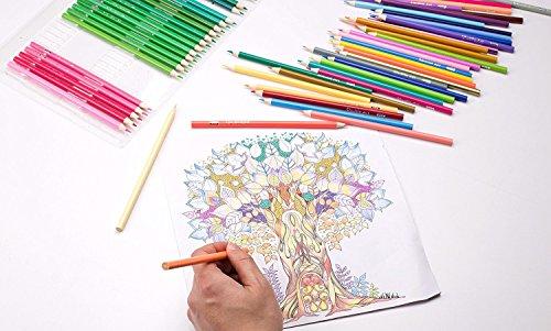 Shuttle Art 136 Juego de lápices de colores para adultos con libros ...