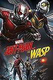 Up Close Poster Ant-Man and The Wasp - Dynamic (61cm x 91,5cm) + Un Poster Bora Bora en Cadeau!