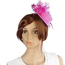 Fascinator Del Sombrero Del Arco Plumas De Color Rosa Pin Broche Para El Cabello Broche De Joyería Tocado Velo