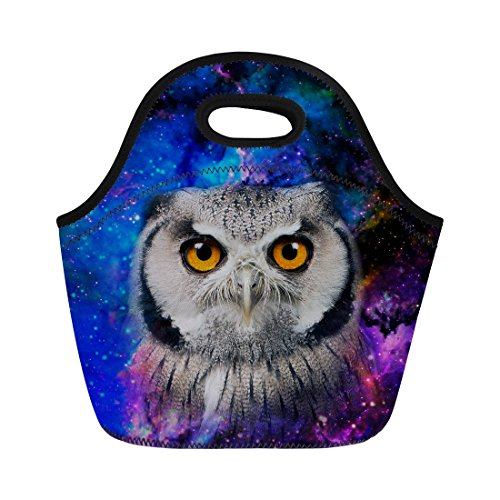 Nopersonality Galaxy Chouette Sac à déjeuner isotherme Femme Tote Nourriture Sac à main, Owl Printing-1, Taille M