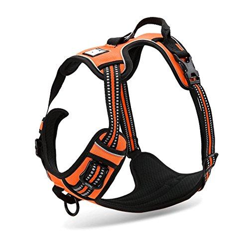 Rantow 3M Reflektierendes Hundegeschirre Einstellbares Sicherheitsgeschirre, weicher Laufgeschirre für große / mittlere / kleine Hunde, orange (M (56-69cm))