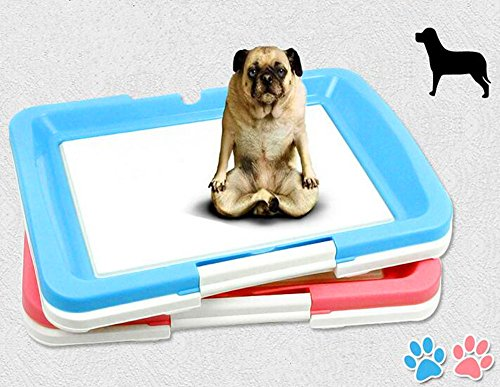 Delmkin Hundetoilette Welpentoilette Hunde Sauberkeitserziehung - 47 x 34 x 5.5cm (rosa)