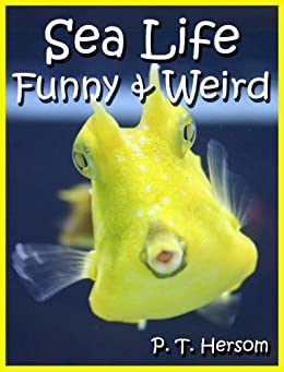 Sea Life Funny & Weird Marine Animals - Learn with Amazing Photos and Facts About Ocean Marine Sea Animals. (Funny & Weird Animals Series Book 1) by [Hersom, P. T.]