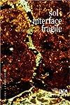 Sol : interface fragile