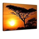 Kunstdruck - Akazienbaum im Sonnenuntergang, Tanzania Serengeti Afrika - Bild auf Leinwand - 80x60 cm - Leinwandbilder - Landschaften - Savanne - Silhouette - Tropen - tropisch