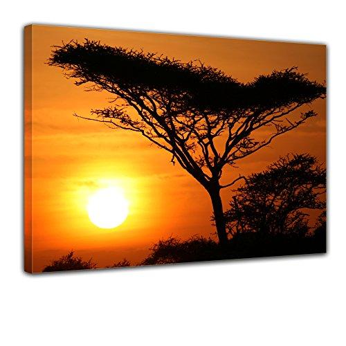 Wandbild - Akazienbaum im Sonnenuntergang, Tanzania Serengeti Afrika - Bild auf Leinwand - 60x50 cm - Leinwandbilder - Landschaften - Savanne - Silhouette - Tropen - tropisch