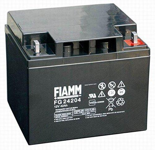 FIAMM Batteria 12V 42 Ah FG24204 VRLA AGM ERMETICA FOTOVOLTAICO ups