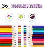 YooGoal 36 Noris Farbe Färbung Bleistift / Zeichnung Bleistifte - verschiedene Farben als Geschenk für Kinder und Male