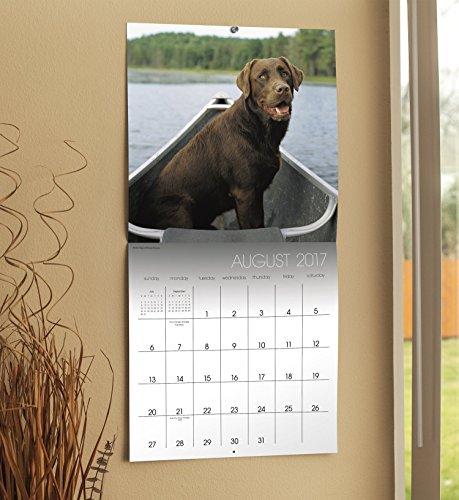 Labrador Retrievers 2017 Calendar: Includes Downloadable Wallpaper