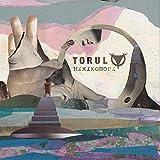 Anklicken zum Vergrößeren: Torul - Hikikomori (Audio CD)