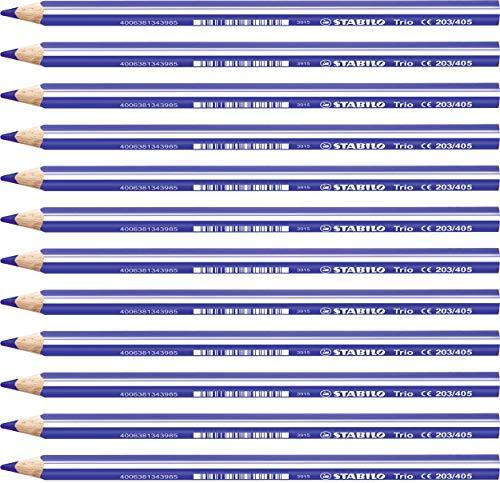 Caja con 12 unidades L/ápiz de color triangular grueso STABILO Trio thick Color rosa