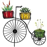 Nuha Cycle Style Stand With 3 Metal Pot: Large Tricycle,Planter Stand, Stand For Pots, Pot Stand For Plants, Pot Stand For Plants In Balcony