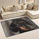 yibaihe leicht, Bereich Teppich Teppich dekorativen modernes Cute Schwarz Hund Rottweiler, wasserabweisend farbbeständige für Wohnzimmer Schlafzimmer 91x 61cm (3'x 2'), 100 % Polyester, multi, 91 x 61 cm(3' x 2')