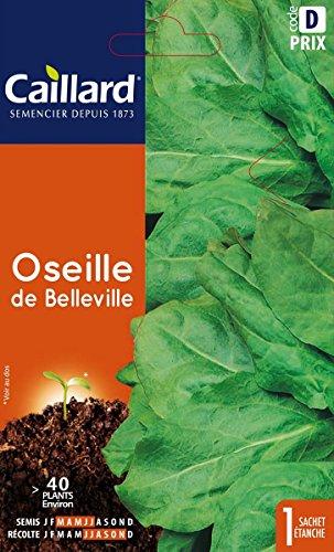 Caillard PFCC14200 Graines de Oseille de Belleville