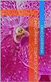 Dino Campana - Complete Poetry (Italian Edition)