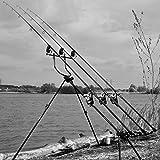 Cygnet Grand Sniper Deluxe Pod RODPOD, Karpfenangeln, Rod Pod für das Angeln auf Karpfen, Rutenständer, Vertikalangeln, Vertical, Karpfensee