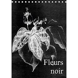 Fleurs noir (Tischkalender 2018 DIN A5 hoch): Fleurs Noir - ist ein künstlerischer Streifzug mit Kreidestift auf koloriertem, leinenstrukturiertem ... ... [Kalender] [Apr 01, 2017] Küster, Friederike