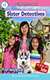 Pup-Napped!: a GEM Sisters book (Sister Detectives 1)