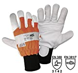 Worky L+D Dachs-Forst 1604 Rindnarbenleder Forstschutzhandschuh Größe (Handschuhe): 10, XL EN 388