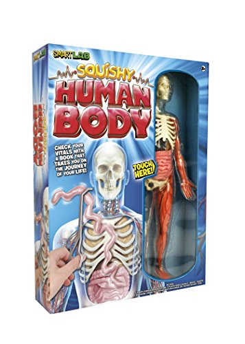 smart-lab-squishy-human-body