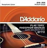 D\'Addario Cordes en bronze phosphoreux et avec filet supérieur plat pour guitare acoustique D\'Addario EFT13, guitare à résonateur, 16-56