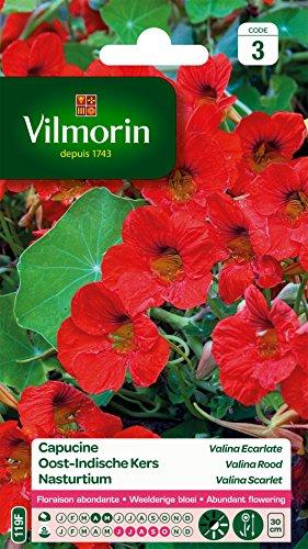 Vilmorin 5191143 Pack de Graines Capucine Valina Ecarlate