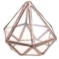 MagiDeal Geometrisches Glas Terrarium Box Glas Sukkulente Pflanzen Pflanzgefäß Deko Diamant Form - S