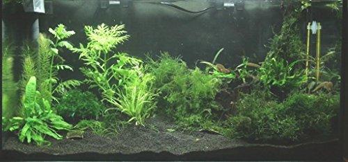 TM Aquatix Aquarium Sand Natural Fish Tank Gravel Plant Substrate (15kg, Black 0,6-1,2mm) 2