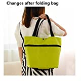 House of Quirk Portable Foldable Trolley Bag Shopping Bag