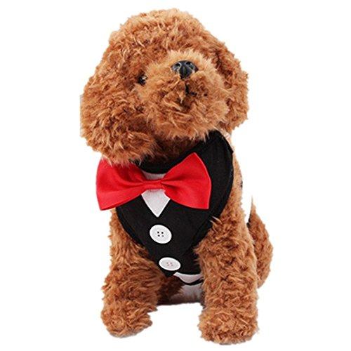 Hundeleinen Kleine und Mittlere Hunde Gehen Seil Weste Brustgurt Bowtie Gentleman Anzug Boy Harness Weste für Hunde Mit Griff (L(44-64cm), schwarz) (Tuxedo Freund)