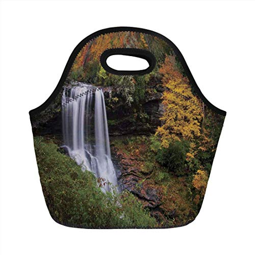 Portable Bento Lunch Bag,Waterfall,Autumn Waterfalls with Trees and Pale Fall Leaves in The Forest Print,Green Yellow White,for Kids Adult Thermal Insulated Tote Bags (Ipad-coach Fall)