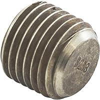 Raypak 501329 Intestazione Plug
